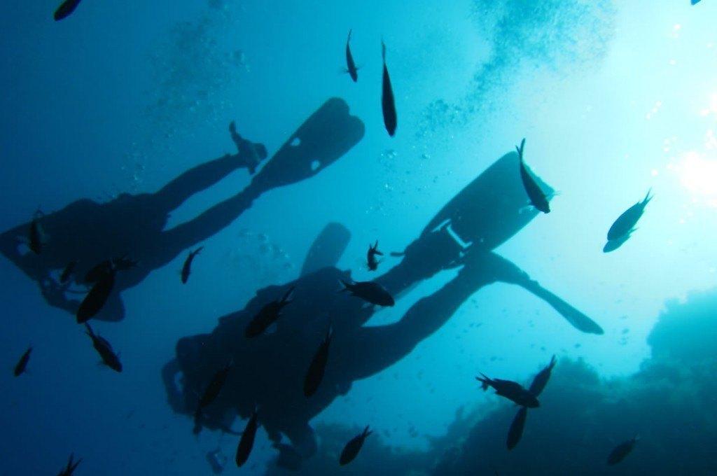hotel-ollastu-olbia-sardegna-diving6